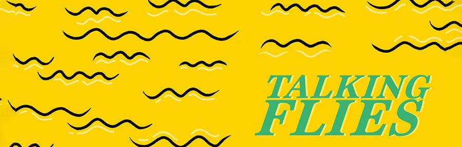 Musik zum Wochenstart: Jolphin - Talking Flies